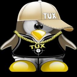 Ricompilazione del Kernel Linux, Linux