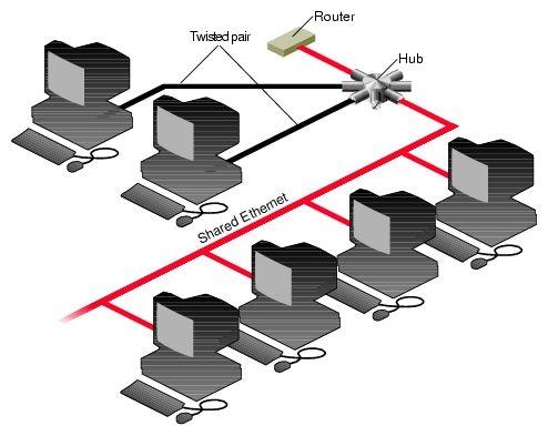 Struttura di una rete lan, Informatica