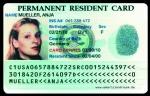 Vincere la green card
